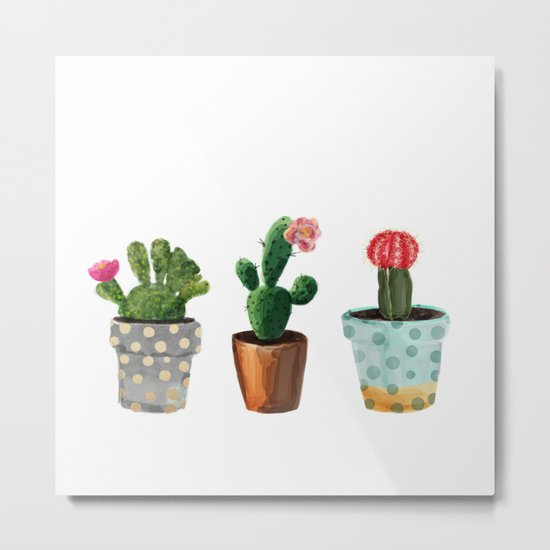 Three Cacti With Flowers On White Background Metal Print