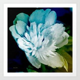 Blue Peony Flower Art Art Print