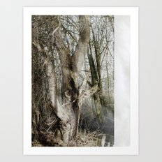 The Bewitched Tree Art Print