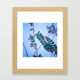 Vintage Sky Framed Art Print