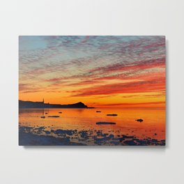 Coastal Delight Metal Print