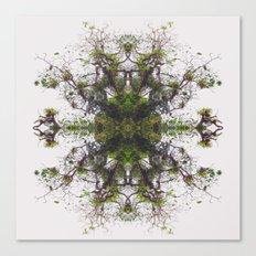 Epiphyte Kaleidoscope Canvas Print