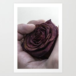 Hand Clutching a Dying Rose Art Print