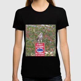 No Parking Hawk 3 T-shirt