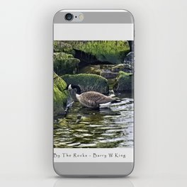 by the rocks iPhone Skin