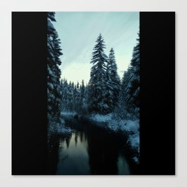 Link Creek Canvas Print