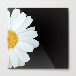Hello Daisy - White Flower Black Background #decor #society6 #buyart Metal Print