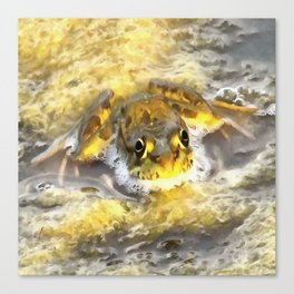 Frog In Deep Water Canvas Print