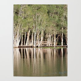 Duck Lake Poster
