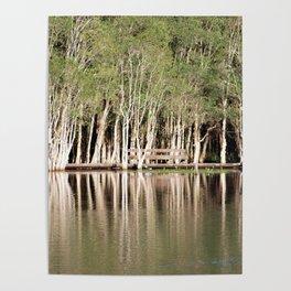 Duck Lake Poster