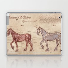 Anatomy of the Unicorn Laptop & iPad Skin