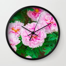 peony in a Japanese garden Wall Clock