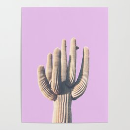 pink, saguro, California photography, California Wall Art, Palm Springs Poster