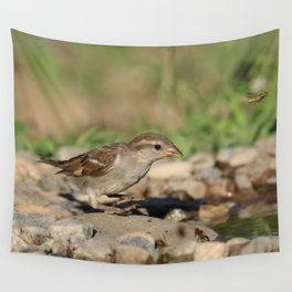Young sparrow at watter Wall Tapestry