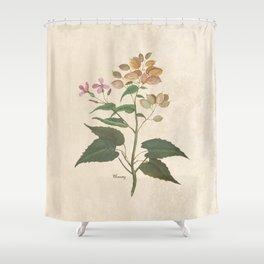Honesty - botanical Shower Curtain