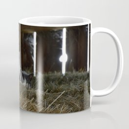 Barn Cat Coffee Mug