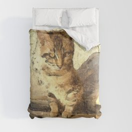 All Cats Are Black In The Dark Comforters