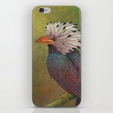 White Crested Hornbill iPhone & iPod Skin