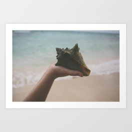Hand Holding Conch Shell by Ocean Art Print