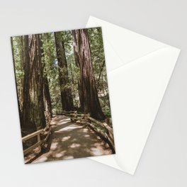 Muir Woods Trail Stationery Cards