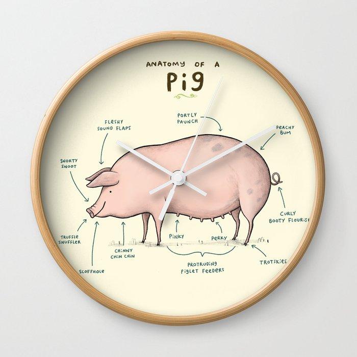 Anatomy Of Pig Gallery - human body anatomy