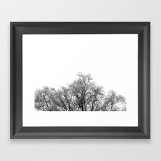 A tree and his crown in winter II Framed Art Print