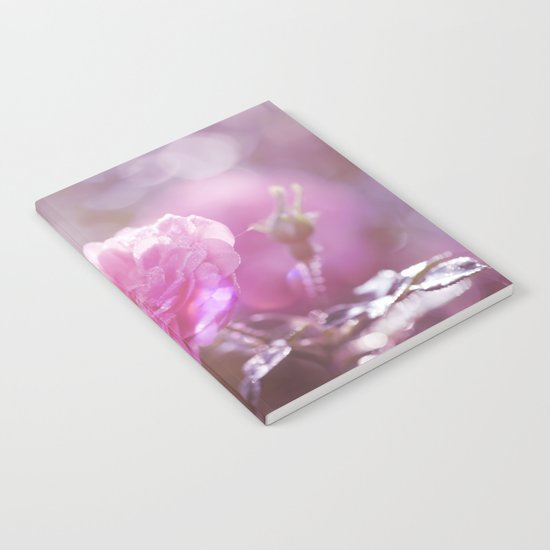 Autumn Roses at backlight  - Roses and Flowers Notebook