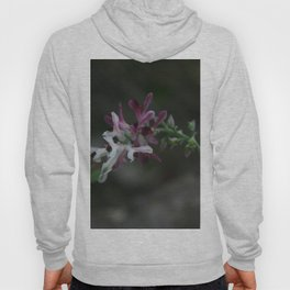 Earth Smoke Flower Hoody