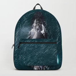 Humpback Whale in Iceland - Wildlife Photography Backpack
