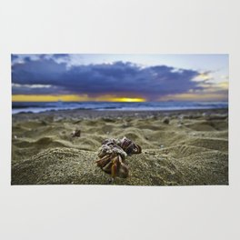 Hermit Crabs on the beach Rug