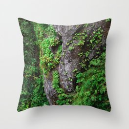 Cape Flattery Raven Head Boulder Bird Moss Ferns Rock Geology Washington Cliff Hiking Forest Throw Pillow