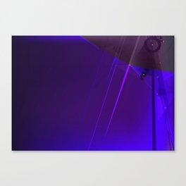 nurt Canvas Print