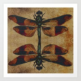 Dragonfly Mirrored on Leather Art Print