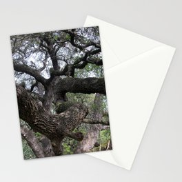 Mossy Oak in the Woods Stationery Cards