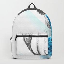 dissolve Backpack