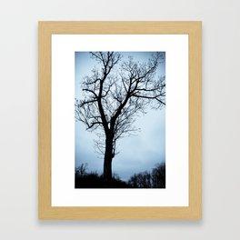 The Sentry Framed Art Print