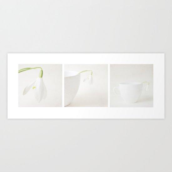 Snowdrop Panoramic  Art Print