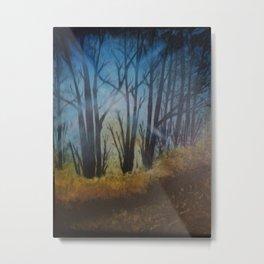 Sun through the Trees on an Autumn Day Metal Print