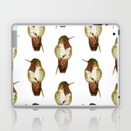 Volcano Hummingbird Laptop & iPad Skin