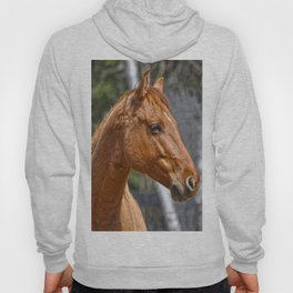Equus Hoody