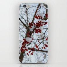 Snow branch iPhone & iPod Skin