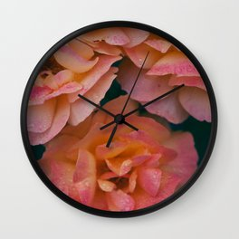 Point defiance rose garden on a rainy day Wall Clock