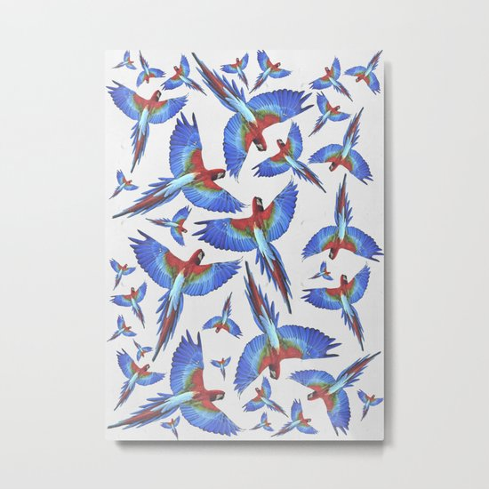 Parrot. Metal Print