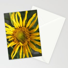 Stringy Sunflower LC Stationery Cards