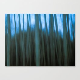 In the forest XXII Canvas Print