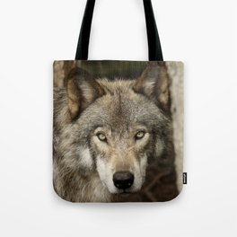 The intensity of the timber wolf Tote Bag