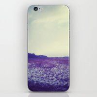 ohio iPhone & iPod Skins featuring Ohio by Claire Beaufort