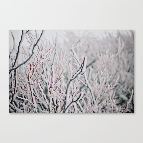 Winter Snow  Canvas Print
