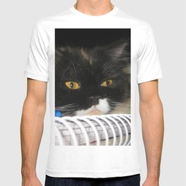 Cat Wanna Study T-shirt