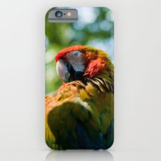 Macaw iPhone 6s Slim Case